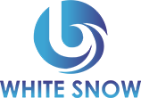 """WHITE SNOW CORPORATION"" ООО"